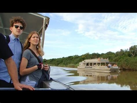 youtube video of hippo chasing boat st lucia south africa hippo boat cruise trips doovi