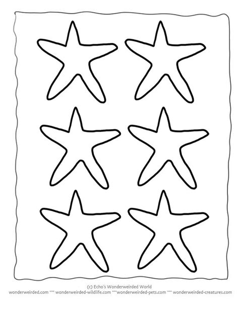 printable starfish 25 creative starfish template ideas to discover and try