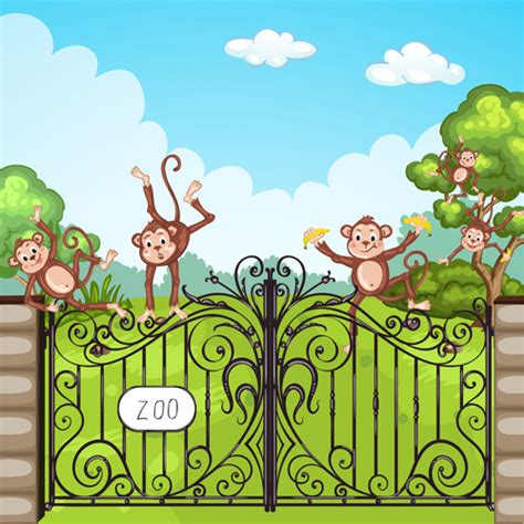 monkey in the zoo cartoon
