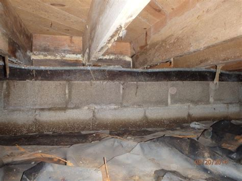 Home Insulation Services   Crawl Space that Leaks