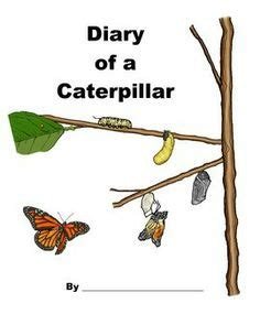 printable caterpillar observation journal butterfly life cycle daily observation journal science