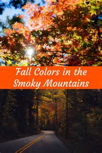 fall colors smoky mountains finding sanity crazy