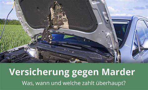 Marder Auto Versicherung by Was Zahlt Die Versicherung Beim Marderschaden 187 Alles