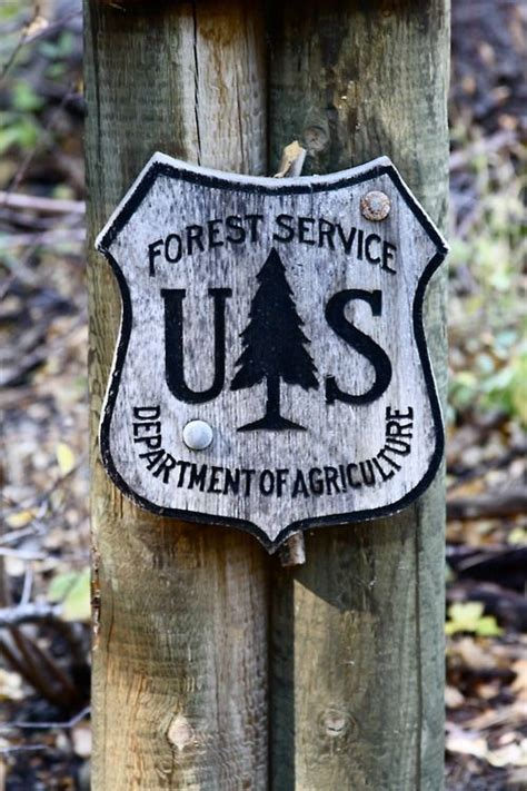 No Reservations Required no reservations required national forests rule