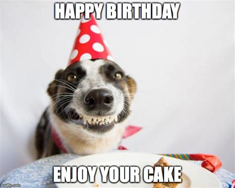 Puppy Birthday Meme - birthday dog imgflip