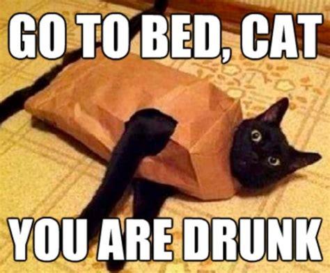 You Re Drunk Meme - go home you re drunk