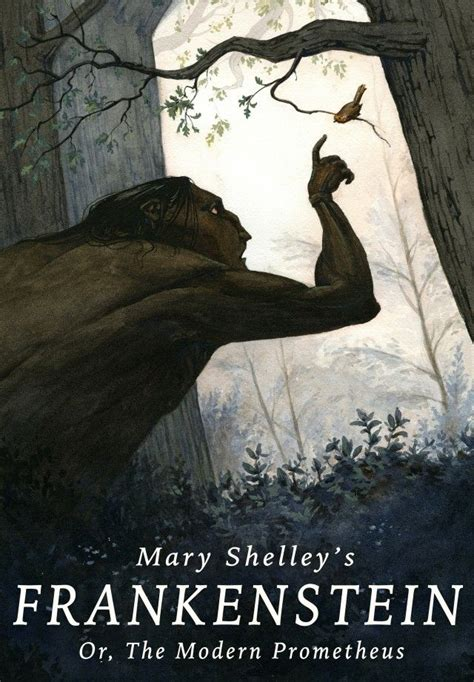 themes frankenstein mary shelley sparknotes book cover illustration for mary shelley s frankenstein