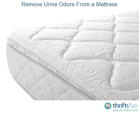 how to remove pee smell from bed remove urine odors from a mattress thriftyfun