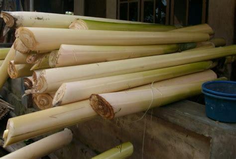 Hidup Seperti Leri manajemen air pembuatan starter bakteri pelepah pisang