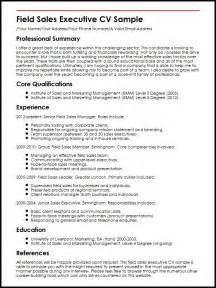 sle professional resume format field sales executive cv sle myperfectcv