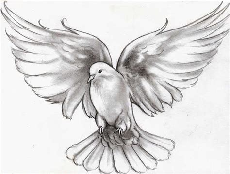 holy spirit dove tattoo designs flying dove meaning animals dove