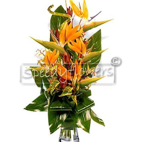 mandare fiori in italia mandare fiori a domicilio roma italia