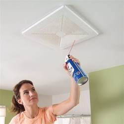 Bathroom Fan Cleaning Bathroom Cleaning Tips And Tricks Hative