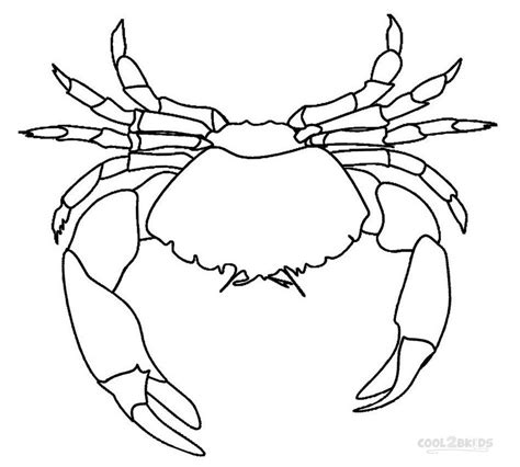 spider outline coloring page crab outline images reverse search
