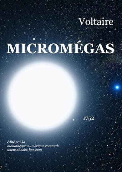 le micromgas microm 233 gas