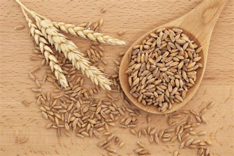 whole grains other than wheat is spelt more nutritious than wheat