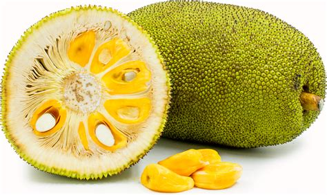 jackfruit images jack fruit information recipes and facts