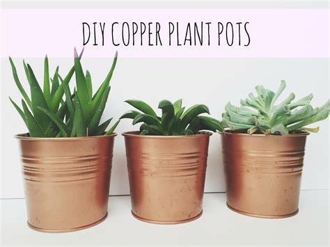 Pots For Plants by Copper Plant Pots Diy Swimming Sideways
