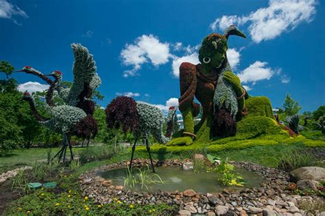 Define Botanical Garden Horticultural Artists Grow Fantastical At The Montr 233 Al Botanical Garden Science