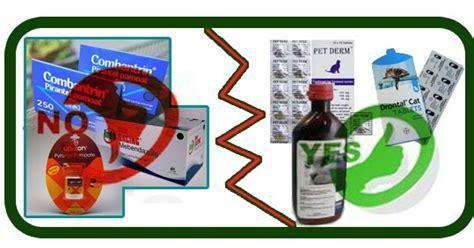Obat Cacingan Dewasa obat cacing manusia tidak bisa diterapkan di kucing omah