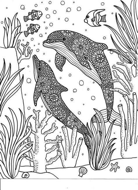 coloring dolphin whale shark images