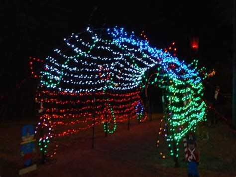 birmingham zoo christmas lights best 28 birmingham zoo lights zoolight safari at the birmingham zoo 2630 cahaba