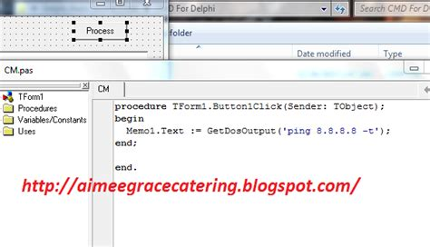 tutorial indy delphi cara mudah membuat aplikasi ping cmd dengan delphi