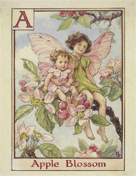 fate dei fiori fate dei fiori fate dei fiori di melo il giardino tempo