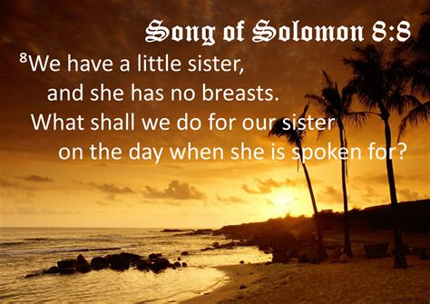 libro song of solomon a jerboy must die obscure bible verses 6 song of solomon 8 8 ang problema ng maliit na
