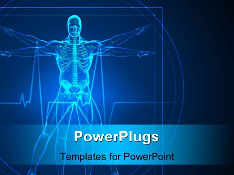 Powerpoint Template Body And Skeleton Vitruvian Man In Blue 32496 Human Powerpoint Template
