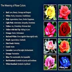 the meaning of the color of roses flower therapy meaning of colors spiritual