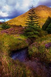 Beautiful Scotland Nature