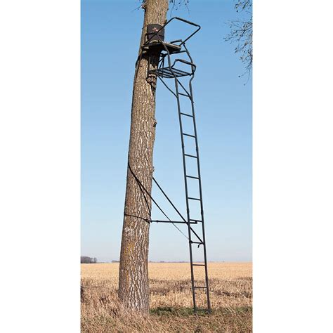 big game 174 19 arch rival ladder tree stand 222711