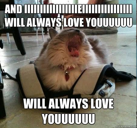 And I Will Always Love You Meme - i will always love you funny memes