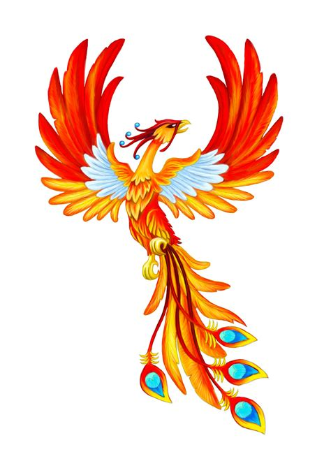 phoenix color by dzverbula on deviantart
