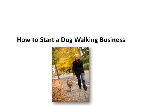 when to start walking a puppy how to start a walking business