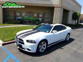 racing stripes dodge charger gator wraps