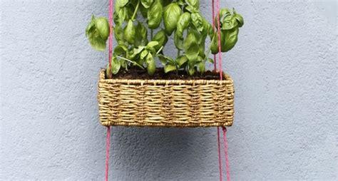 cassette per piante contenitori per piante giardino scegliere contenitori