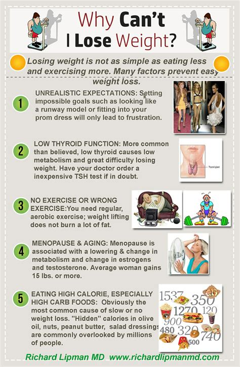Why Cant I Lose Weight by Infographic Why Can T I Lose Weight