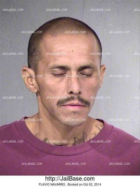 Navarro County Arrest Records Flavio Navarro Arrest History