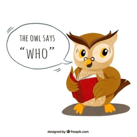 libro the owl who was los libros de la lechuza descargar fotos gratis