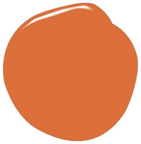 benjamin natura paint orange parrot modern paint by pottery barn