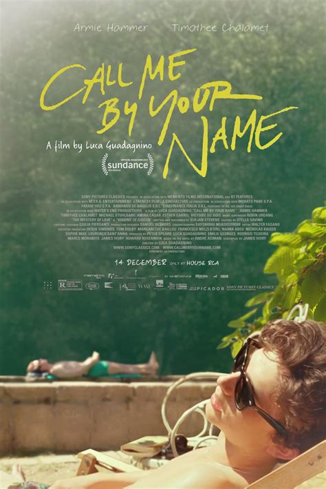 movie info call me by your name by armie hammer call me by your name american express openair cinemas