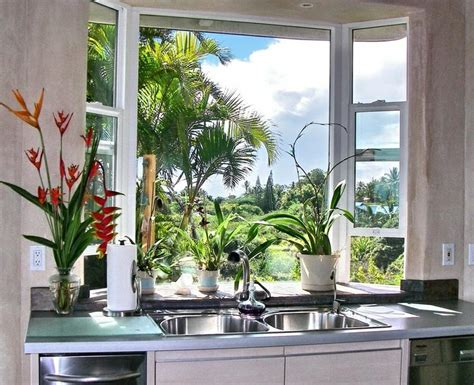 kitchen garden window ideas garden windows for kitchens upgrading the outlook right away homesfeed