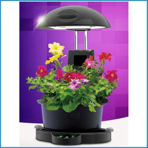 indoor garden plant grow lightindoor plant hydroponic