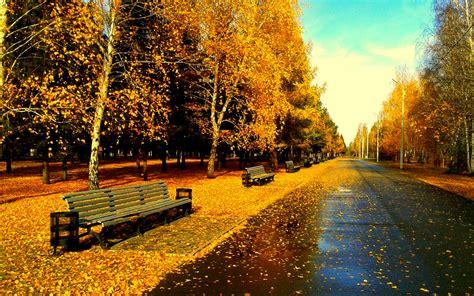 golden village wallpaper after rain s wallpaper 1920x1200 5663