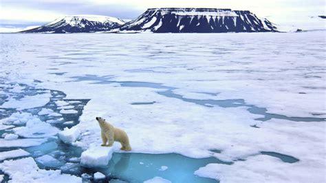 imagenes de paisajes de zonas polares viajes en europa viaje al archipi 233 lago de svalbard osos