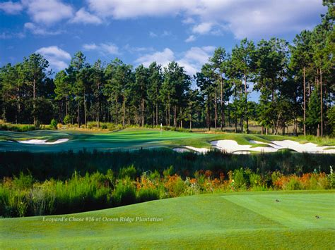 Ocean Ridge   Leopards Chase   Myrtle Beach Golf   On The Green Magazine : Myrtle Beach Golf