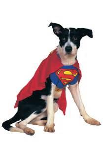 dogs halloween costume superman dog costume