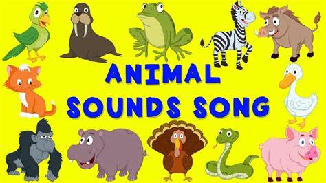 animal sounds song english nursery rhyme baby song